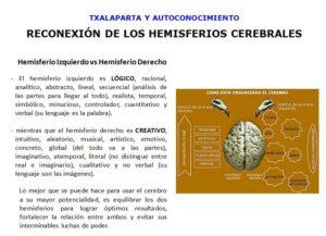 Características de cada uno de los Hemisferios Cerebrales
