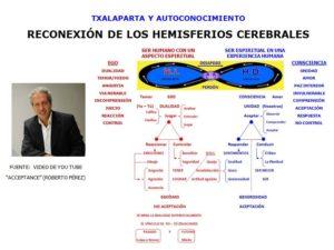 Características de los Hemisferios Cerebrales